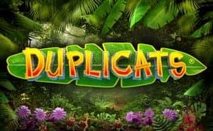 Duplicats online slot uk