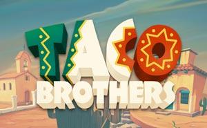 Taco Brothers uk slot